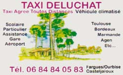 Taxi deluchat